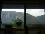 my window